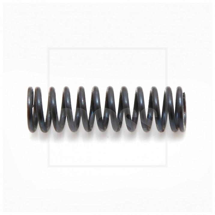 Spring, pump valve