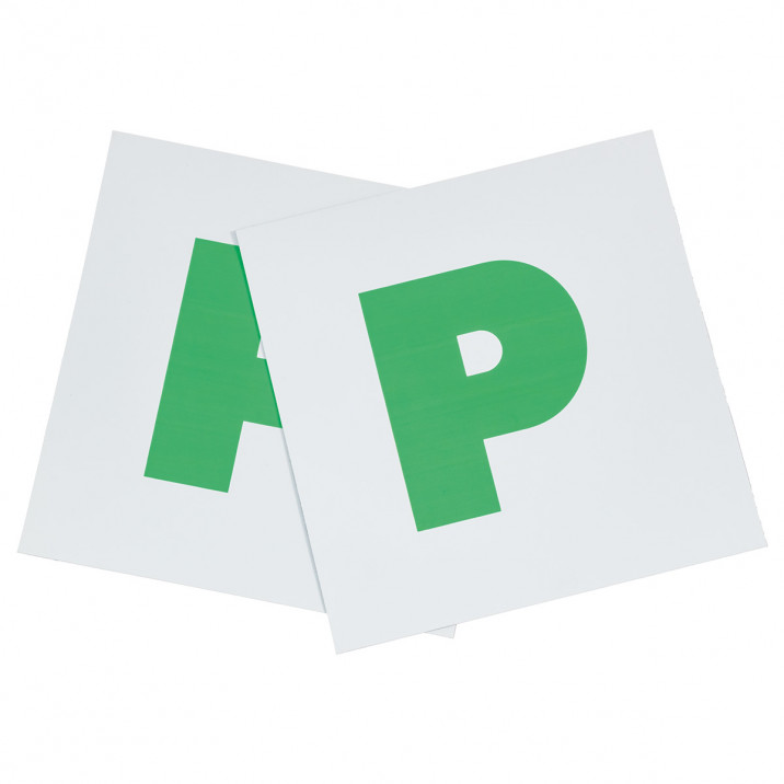 AA Magnetic P Plate