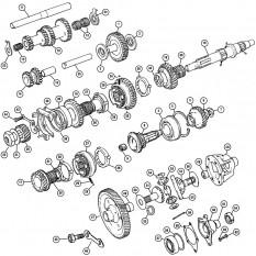 Gearbox Internals: Gears & Differential - Mini