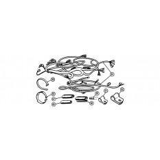 Wiring Harness & Fittings - MGA (1955-62)