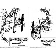 Water Pump, Fan & Fittings - TA,TB,TC,TD & TF (1936-55)
