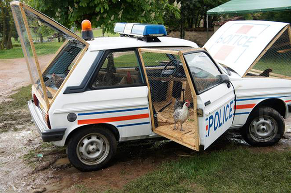 Police car chicken coop