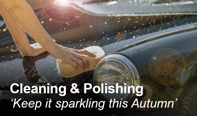 Cleaning & Polishing