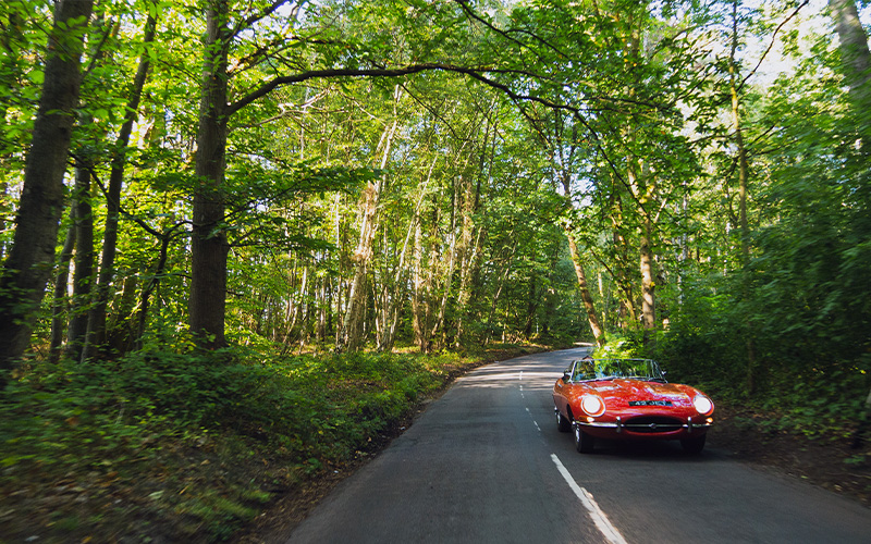 E-Type Buyer's Guide image 02